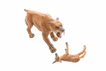 10. Dader slachtoffer Hert en sabeltandtijger